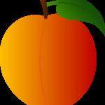 peachy_peach